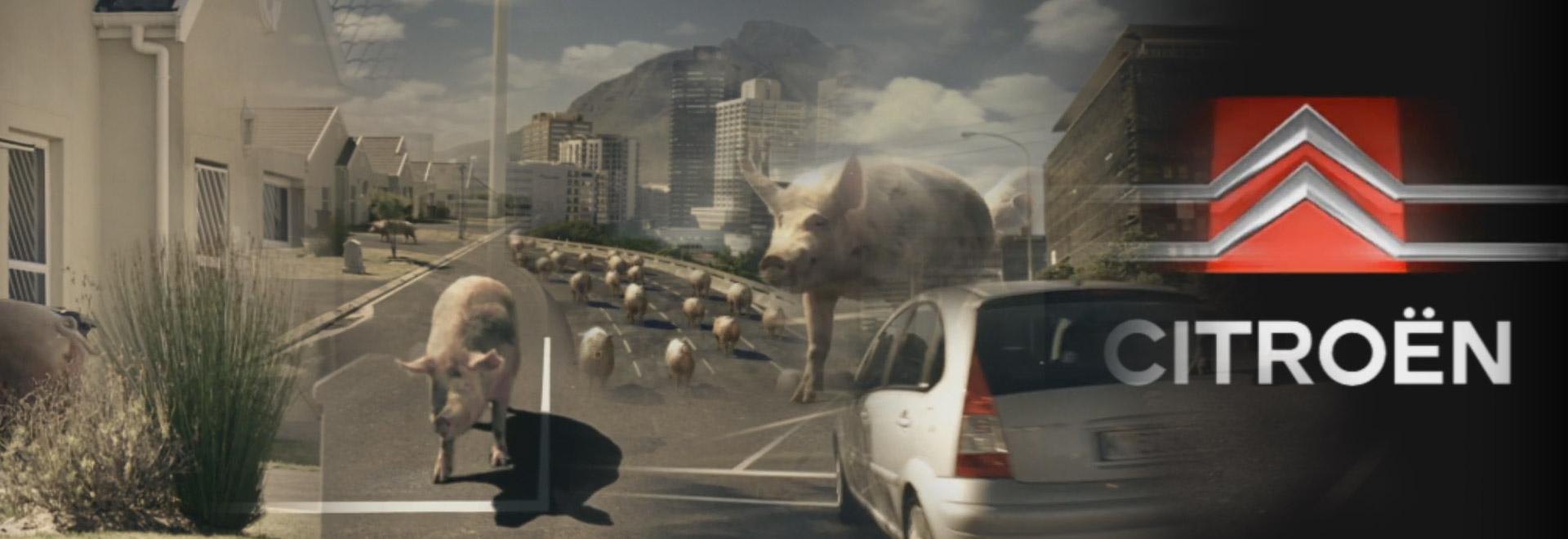 js-filmproduction-postproduction-commercial-citroen-dieselschweine-header