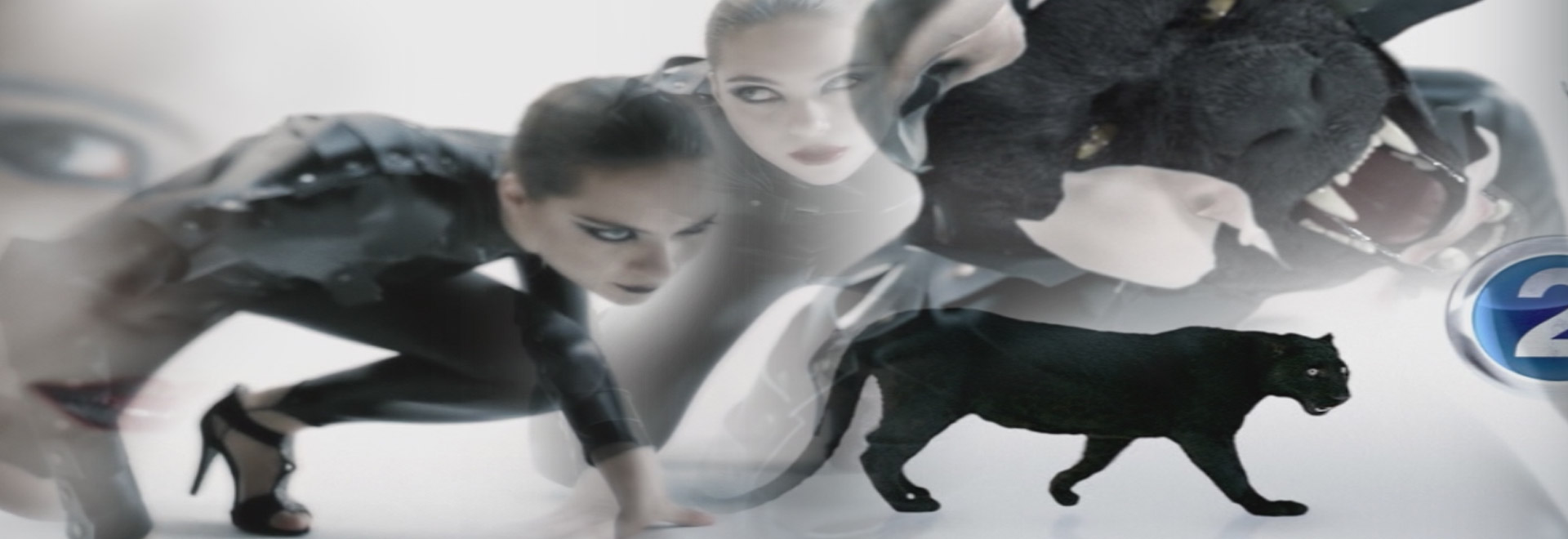 js-filmproduction-postproduction-commercial-mbc-panter-header